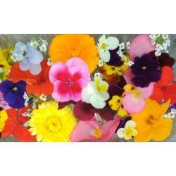 Квіти їстівні