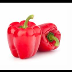 Перець болгарський червоний імпорт