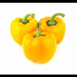Перець болгарський жовтий (імпорт)